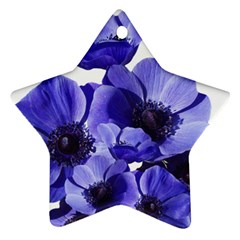 Poppy Blossom Bloom Summer Ornament (star)