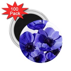 Poppy Blossom Bloom Summer 2 25  Magnets (100 Pack)