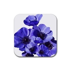 Poppy Blossom Bloom Summer Rubber Square Coaster (4 Pack)  by Nexatart