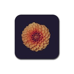 Art Beautiful Bloom Blossom Bright Rubber Coaster (square)  by Nexatart