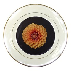 Art Beautiful Bloom Blossom Bright Porcelain Plates by Nexatart