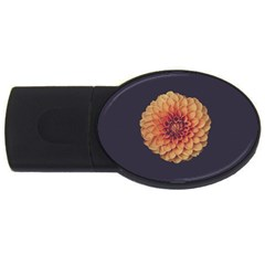 Art Beautiful Bloom Blossom Bright Usb Flash Drive Oval (4 Gb) by Nexatart