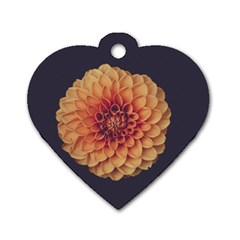 Art Beautiful Bloom Blossom Bright Dog Tag Heart (one Side) by Nexatart