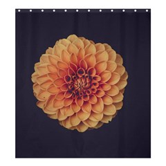 Art Beautiful Bloom Blossom Bright Shower Curtain 66  X 72  (large)  by Nexatart
