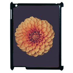 Art Beautiful Bloom Blossom Bright Apple Ipad 2 Case (black)