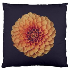 Art Beautiful Bloom Blossom Bright Large Cushion Case (two Sides) by Nexatart