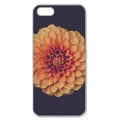 Art Beautiful Bloom Blossom Bright Apple Seamless Iphone 5 Case (clear)