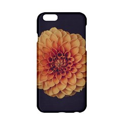 Art Beautiful Bloom Blossom Bright Apple Iphone 6/6s Hardshell Case by Nexatart
