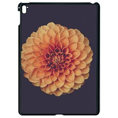 Art Beautiful Bloom Blossom Bright Apple Ipad Pro 9 7   Black Seamless Case by Nexatart