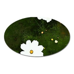 Daisies In Green Oval Magnet