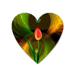 Tulip Flower Background Nebulous Heart Magnet by Nexatart