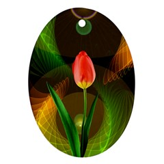 Tulip Flower Background Nebulous Oval Ornament (two Sides) by Nexatart