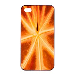 Red Leaf Macro Detail Apple Iphone 4/4s Seamless Case (black) by Nexatart
