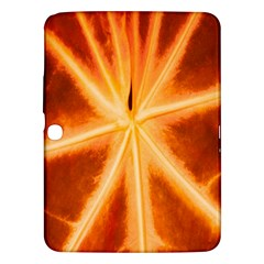 Red Leaf Macro Detail Samsung Galaxy Tab 3 (10 1 ) P5200 Hardshell Case  by Nexatart