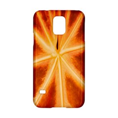 Red Leaf Macro Detail Samsung Galaxy S5 Hardshell Case  by Nexatart