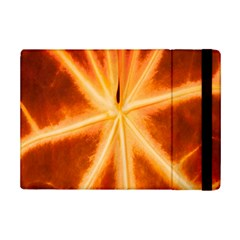 Red Leaf Macro Detail Ipad Mini 2 Flip Cases by Nexatart