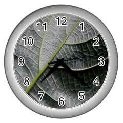 Leaf Detail Macro Of A Leaf Wall Clocks (silver)  by Nexatart