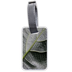 Leaf Detail Macro Of A Leaf Luggage Tags (one Side)  by Nexatart
