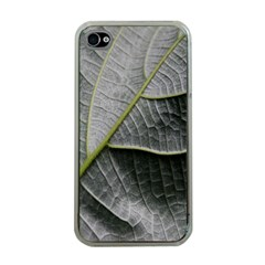 Leaf Detail Macro Of A Leaf Apple Iphone 4 Case (clear) by Nexatart