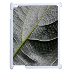 Leaf Detail Macro Of A Leaf Apple Ipad 2 Case (white) by Nexatart