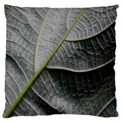 Leaf Detail Macro Of A Leaf Large Cushion Case (one Side) by Nexatart
