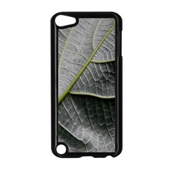Leaf Detail Macro Of A Leaf Apple Ipod Touch 5 Case (black)