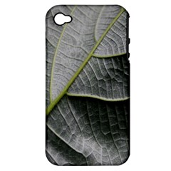 Leaf Detail Macro Of A Leaf Apple Iphone 4/4s Hardshell Case (pc+silicone) by Nexatart