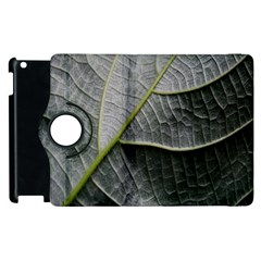 Leaf Detail Macro Of A Leaf Apple Ipad 3/4 Flip 360 Case by Nexatart