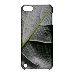 Leaf Detail Macro Of A Leaf Apple Ipod Touch 5 Hardshell Case With Stand by Nexatart