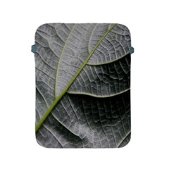Leaf Detail Macro Of A Leaf Apple Ipad 2/3/4 Protective Soft Cases by Nexatart
