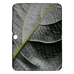 Leaf Detail Macro Of A Leaf Samsung Galaxy Tab 3 (10 1 ) P5200 Hardshell Case  by Nexatart