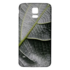Leaf Detail Macro Of A Leaf Samsung Galaxy S5 Back Case (white) by Nexatart