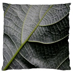 Leaf Detail Macro Of A Leaf Large Flano Cushion Case (one Side) by Nexatart