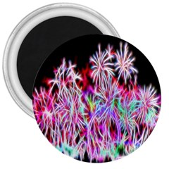 Fractal Fireworks Display Pattern 3  Magnets