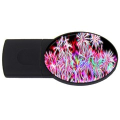 Fractal Fireworks Display Pattern Usb Flash Drive Oval (2 Gb) by Nexatart