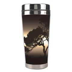 Sunset Stainless Steel Travel Tumblers