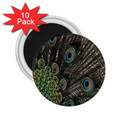Close Up Of Peacock Feathers 2 25  Magnets (10 Pack)  by Nexatart
