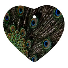 Close Up Of Peacock Feathers Heart Ornament (two Sides) by Nexatart