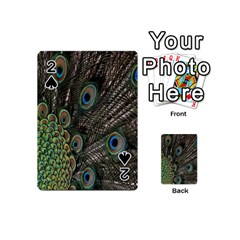 Close Up Of Peacock Feathers Playing Cards 54 (mini)  by Nexatart
