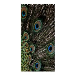 Close Up Of Peacock Feathers Shower Curtain 36  X 72  (stall)
