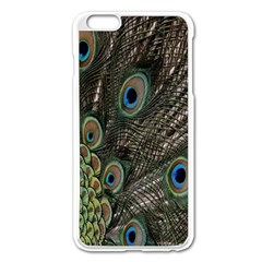 Close Up Of Peacock Feathers Apple Iphone 6 Plus/6s Plus Enamel White Case by Nexatart