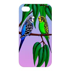 Budgies In The Gum Tree Apple Iphone 4/4s Hardshell Case