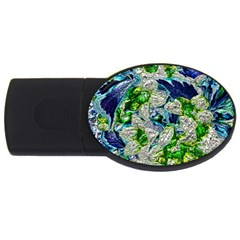 Floral Chrome 2a Usb Flash Drive Oval (2 Gb) by MoreColorsinLife