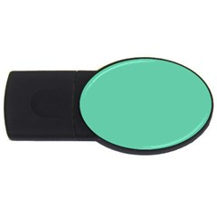 Aquamarine Solid Color  Usb Flash Drive Oval (4 Gb) by SimplyColor