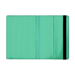 Aquamarine Solid Color  Apple Ipad Mini Flip Case by SimplyColor