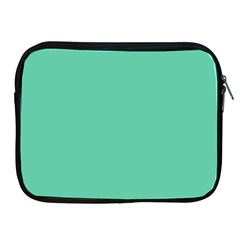 Aquamarine Solid Color  Apple Ipad 2/3/4 Zipper Cases by SimplyColor