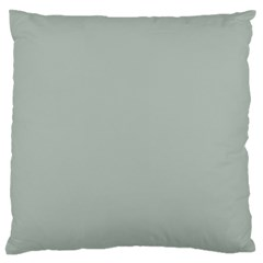 Ash Gray Solid Color  Large Flano Cushion Case (one Side) by SimplyColor