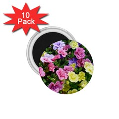 Lovely Flowers 17 1 75  Magnets (10 Pack)  by MoreColorsinLife