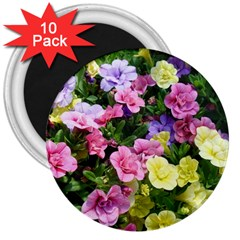 Lovely Flowers 17 3  Magnets (10 Pack)