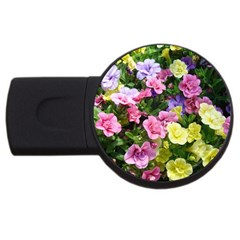 Lovely Flowers 17 Usb Flash Drive Round (2 Gb)